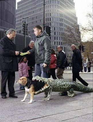 dog_costume_001